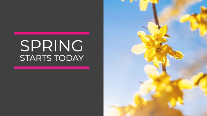 Spring's Arrival – Good News
