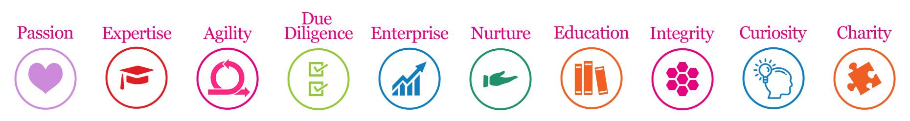 Sturgeon Ventures FCA Authorisation Values
